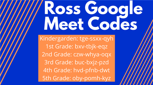 Ross Google Meet Codes